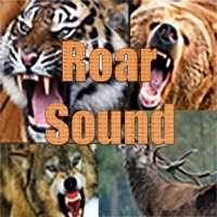 Animals Roar Sound Demo