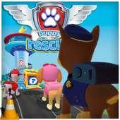 Super Paw Subway Puppy Patrol