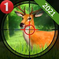 Animals Shooting New Game 2021- Games 2021