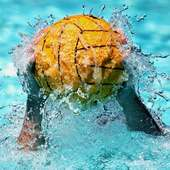 Water Polo Jigsaw Puzzles