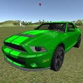 E30 Mustang Rally Chase
