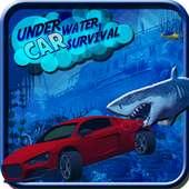 shark attack floating underwater racing car